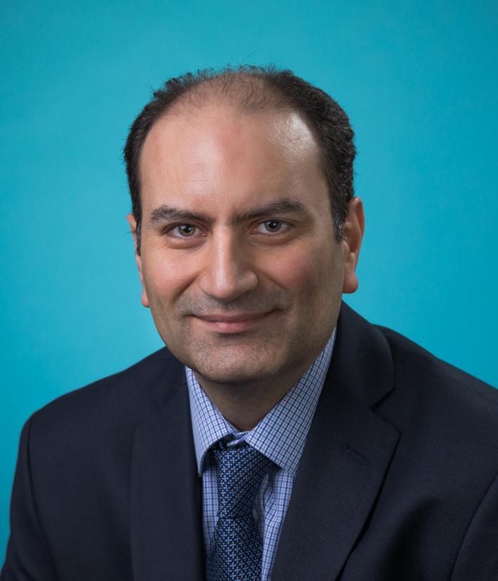Mehdi Rouholamin