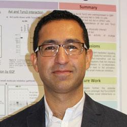 Sassan Hafizi